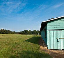 summer field, 2010 by Scott LePage