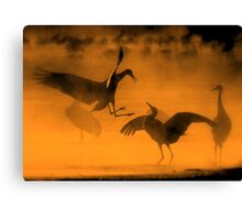 Dancing In The Mist Canvas Print