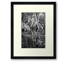 Reflections on a Cypress Swamp Framed Print