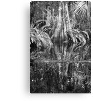 Reflections on a Cypress Swamp Canvas Print