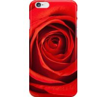 Red Red Rose iPhone Case/Skin
