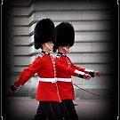 Amazing London - London People - GUARDS - (UK) by Daniela Cifarelli