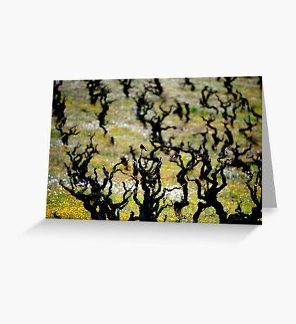 Redstart, Vineyard Greeting Card