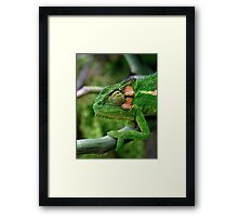 Shades of Green Framed Print