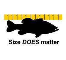Size Does Matter by Marcia Rubin