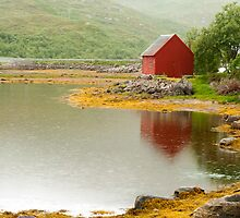 View after road to Lofoten by ilpo laurila