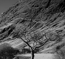 Crummock Water by Silasgreenback