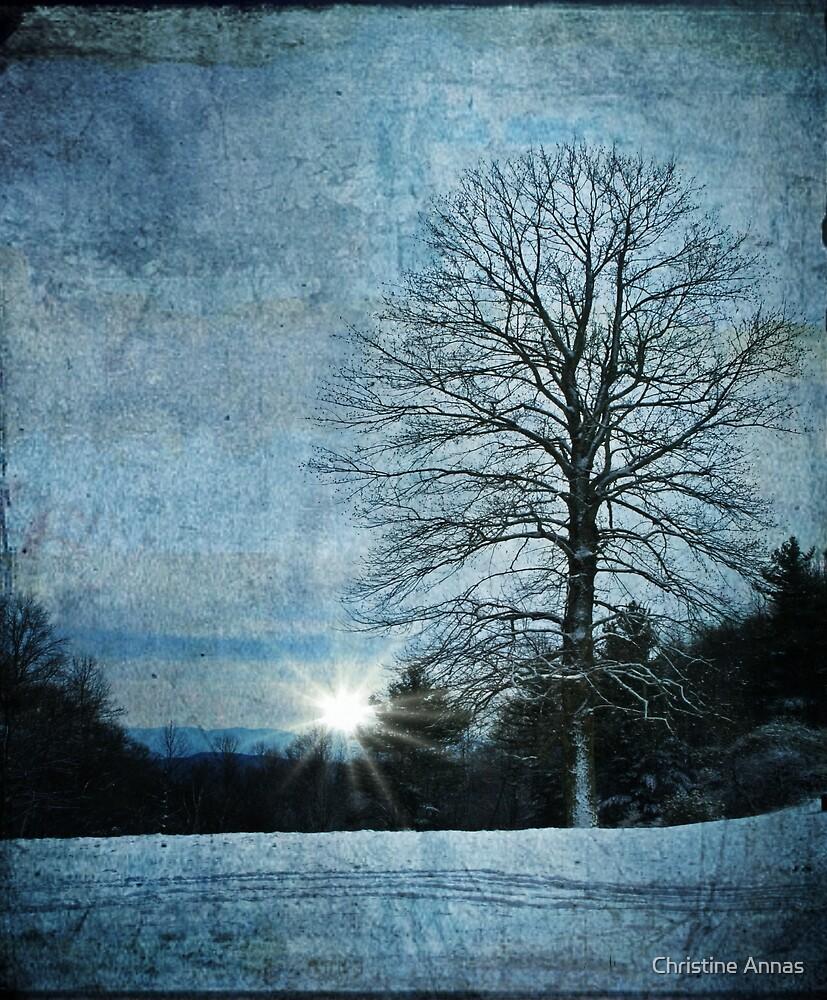 New Blue Sunrise by Christine Annas