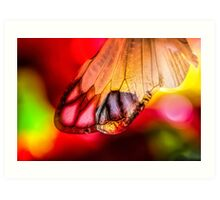 Yearning for Love and Light Art Print