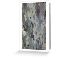 Plain Bark Provence 2 Greeting Card