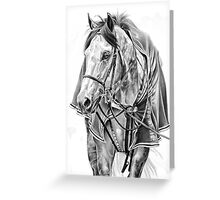"""""""Back To The Barn"""" Greeting Card"""