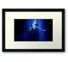 Flying High ~ Wicked Framed Print