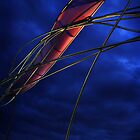 Red sails in the sunset by Robyn Lakeman