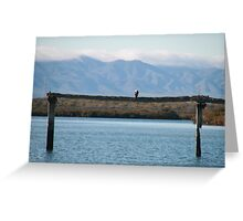 Port Augusta, eco- cruise. S.A. Greeting Card