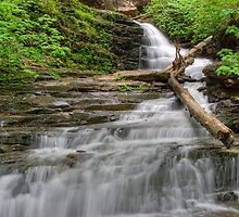 Huron Falls Along The Glen Leigh Trail by Gene Walls