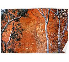 Bungle Trees and Rock Patterns Poster