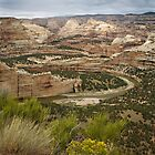 Yampa River Canyons by Kim Barton