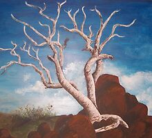 Ancient Tree by Dianne  Ilka