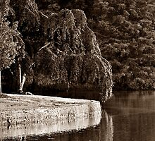 Around The Bend - Sepia Series 1 by Roger Jewell