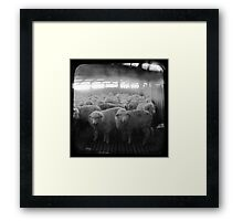 The Holding Pen - TTV Framed Print