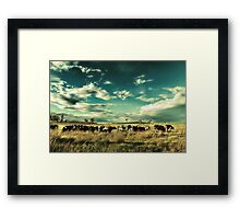 The Meat Train Framed Print