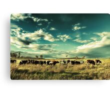 The Meat Train Canvas Print