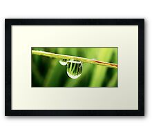 Dew Dome - The world upside down Framed Print