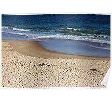 Winter Beaches Poster