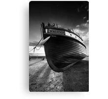 The Patient Kingfisher BW Canvas Print
