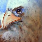 Eagle Portrait by Heidi Mooney-Hill