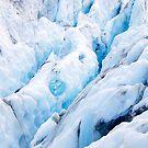 Franz Josef Glacier, New Zealand by Janine  Hewlett