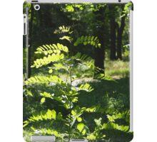 Young sapling acacia iPad Case/Skin
