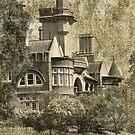 Historic Iandra Castle near Greenethorpe NSW by julie anne  grattan