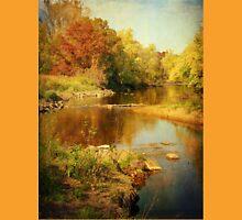 Fall Time at Rum River T-Shirt