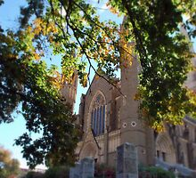 The Sacred Heart Cathedral in Autumn by Lozzar Landscape