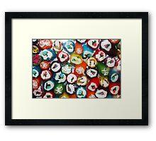 Fruit Rock Framed Print