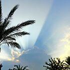 A Florida Sunset by Caren