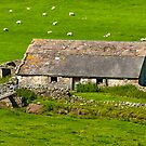 Dales Barn by Trevor Kersley