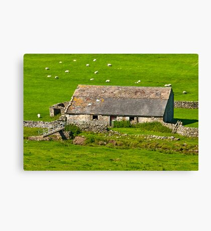 Dales Barn Canvas Print