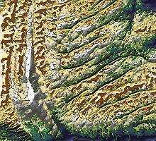 4 x 1 =1 Landscape by Petra Höpfner