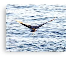 Take-Off Canvas Print