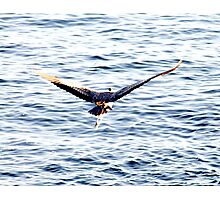 Take-Off Photographic Print
