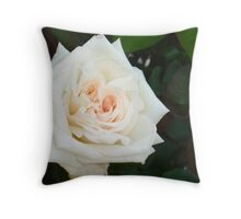 White Rose With Natural Garden Background Throw Pillow