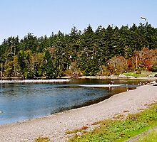 Esquimalt Lagoon, Canada by jodik75