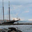 Alliance ~ Yorktown by Jennie L. Richards