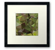 Pistachio Green Abstract Low Polygon Background Framed Print