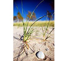 Thanksgiving Beach Photographic Print