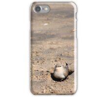 ~ Bird' iPhone Case/Skin