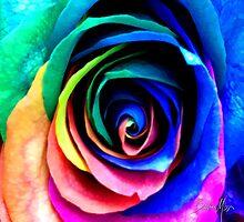 rainbow beauty  by Baha Mosa
