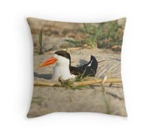 African Skimmer Throw Pillow